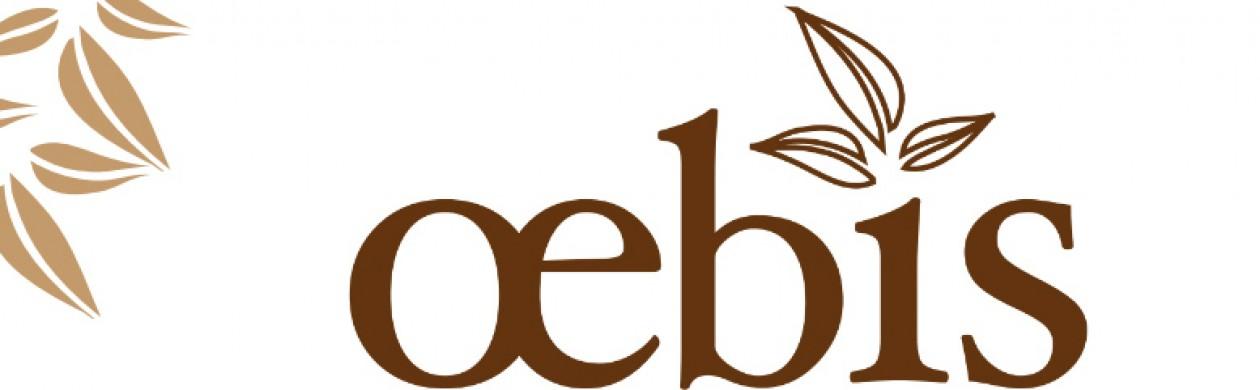 oebis – eigentlich Ökologische Bau- und Informations-Systeme
